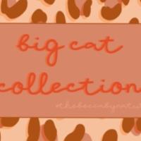 The Big Cat Collection Launch