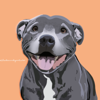 Staffy Love